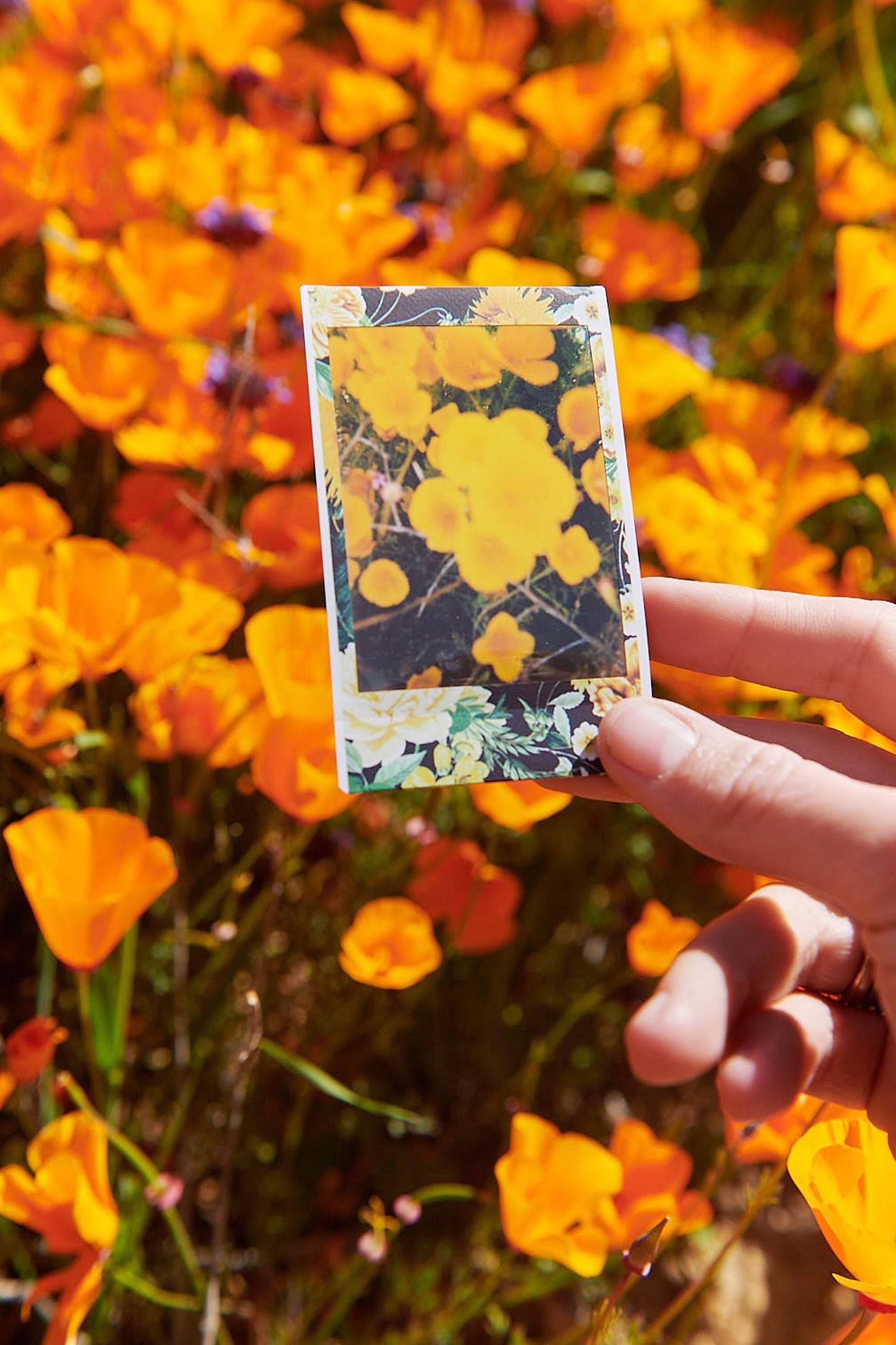 Fujifilm UO Exclusive Instax Mini Bloom Film